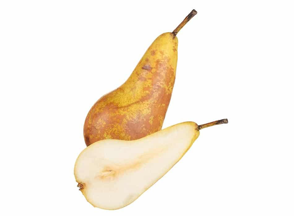 Conference Pears x3 1