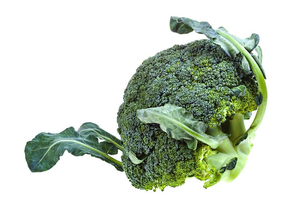 Broccoli Head 1